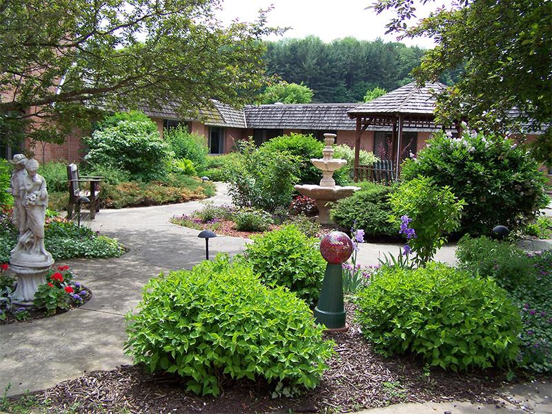 Lush outdoor area
